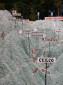 """Ausschnitt von der """"Mapa en Relieve"""" - Topographische Karte von Guatemala - Mehr"""